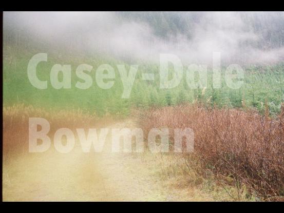 casey-dale-photo-2