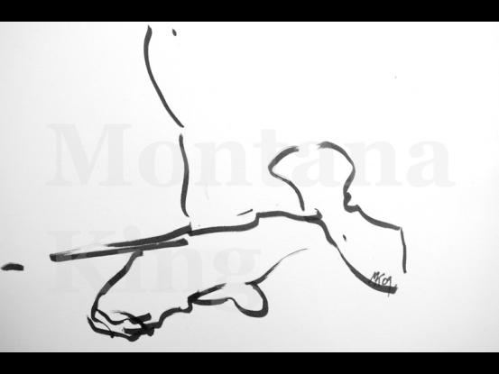 montana-drawing-2