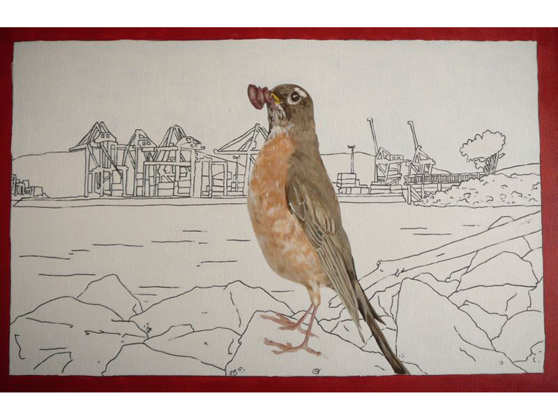 crab-park-robin
